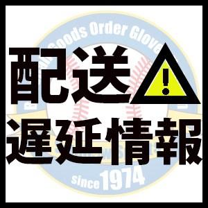 九州中継センター 佐川急便 佐川急便の九州中継センターの場所はどこ?住所、場所、電話番号は?熊本から鹿児島の追跡を地図で確認
